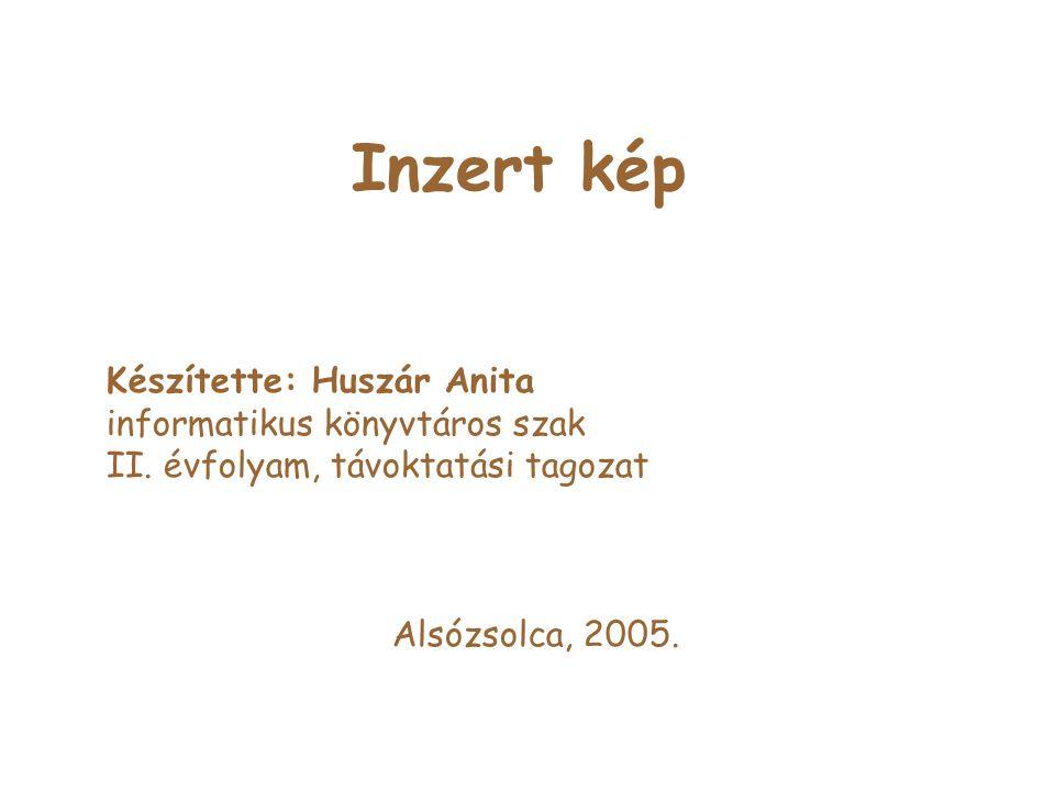 Inzert kép Készítette: Huszár Anita informatikus könyvtáros szak II.
