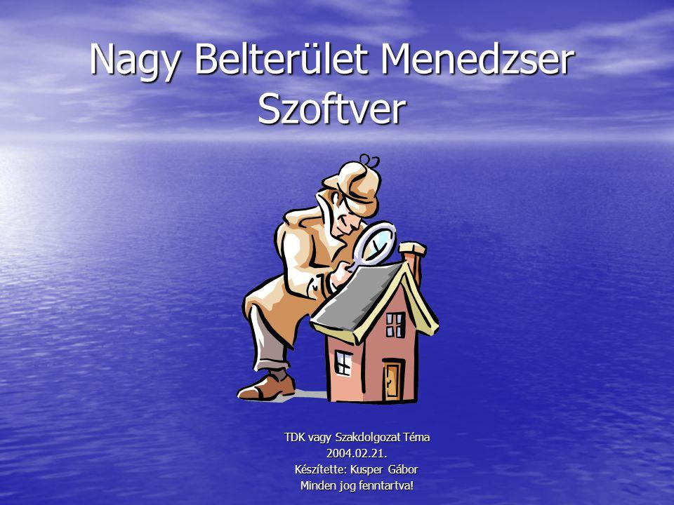 Nagy Belterület Menedzser Szoftver TDK vagy Szakdolgozat Téma 2004.02.21.
