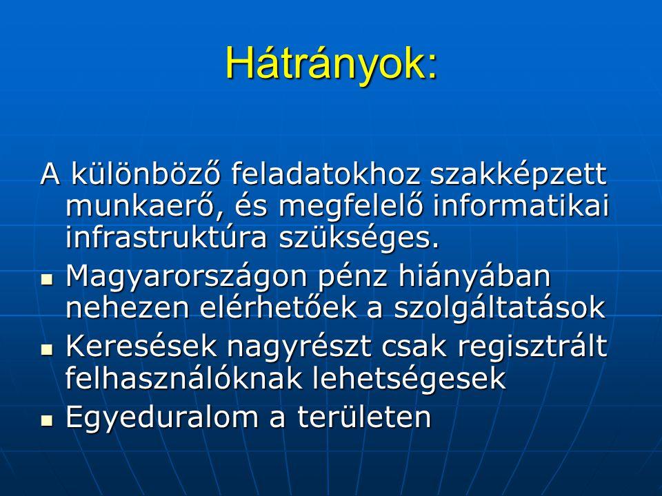 Hátrányok: A különböző feladatokhoz szakképzett munkaerő, és megfelelő informatikai infrastruktúra szükséges.