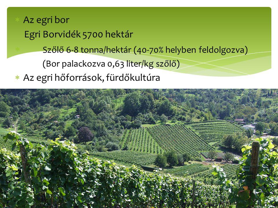  Az egri bor Egri Borvidék 5700 hektár  Szőlő 6-8 tonna/hektár (40-70% helyben feldolgozva) (Bor palackozva 0,63 liter/kg szőlő)  Az egri hőforráso