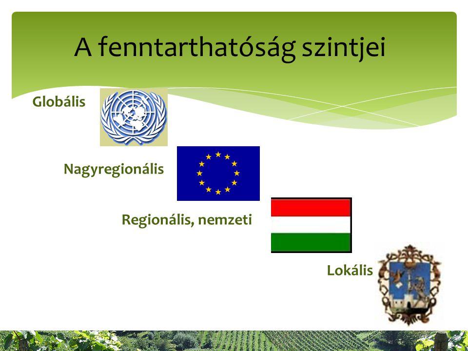 A fenntarthatóság szintjei Globális Nagyregionális Regionális, nemzeti Lokális