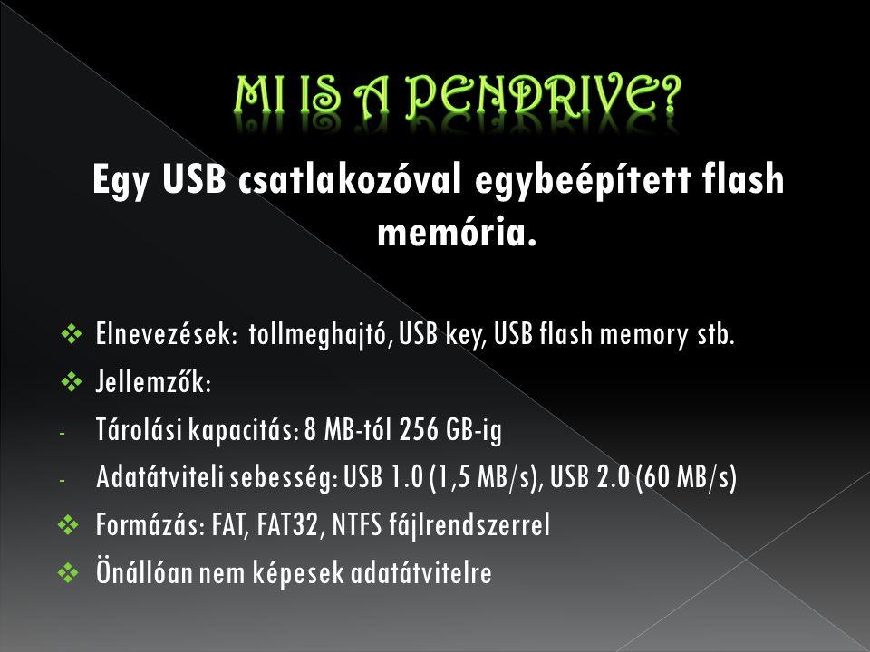 Egy USB csatlakozóval egybeépített flash memória.  Elnevezések: tollmeghajtó, USB key, USB flash memory stb.  Jellemzők: - Tárolási kapacitás: 8 MB-