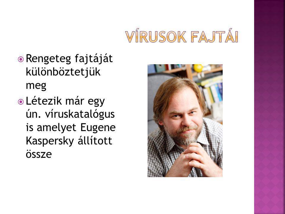  Rengeteg fajtáját különböztetjük meg  Létezik már egy ún. víruskatalógus is amelyet Eugene Kaspersky állított össze