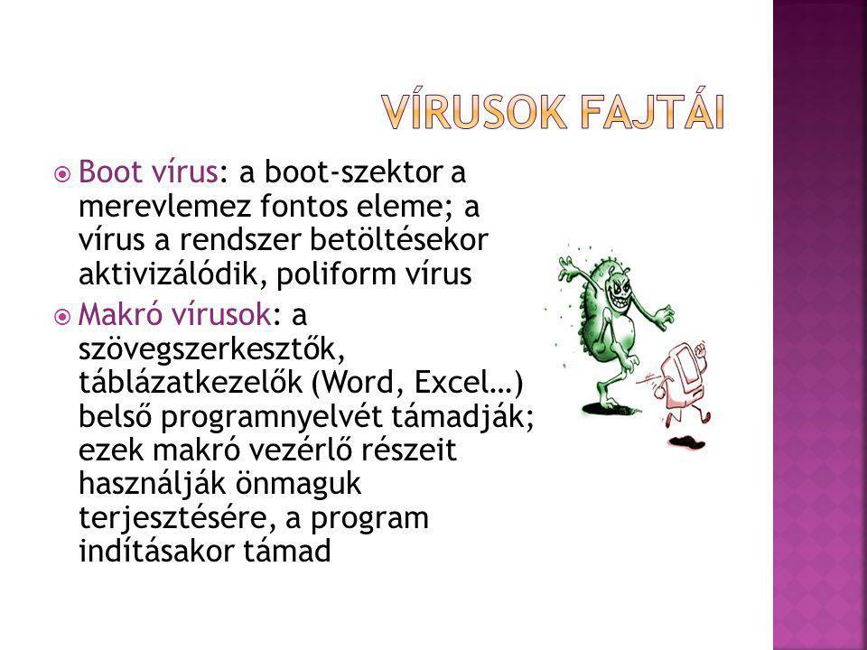  Boot vírus: a boot-szektor a merevlemez fontos eleme; a vírus a rendszer betöltésekor aktivizálódik, poliform vírus  Makró vírusok: a szövegszerkes