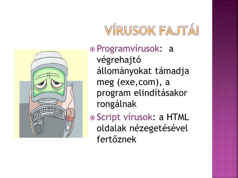  Programvírusok: a végrehajtó állományokat támadja meg (exe,com), a program elindításakor rongálnak  Script vírusok: a HTML oldalak nézegetésével fertőznek