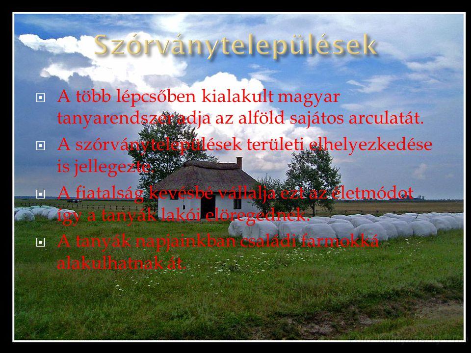 AA több lépcsőben kialakult magyar tanyarendszer adja az alföld sajátos arculatát. AA szórványtelepülések területi elhelyezkedése is jellegezte. 