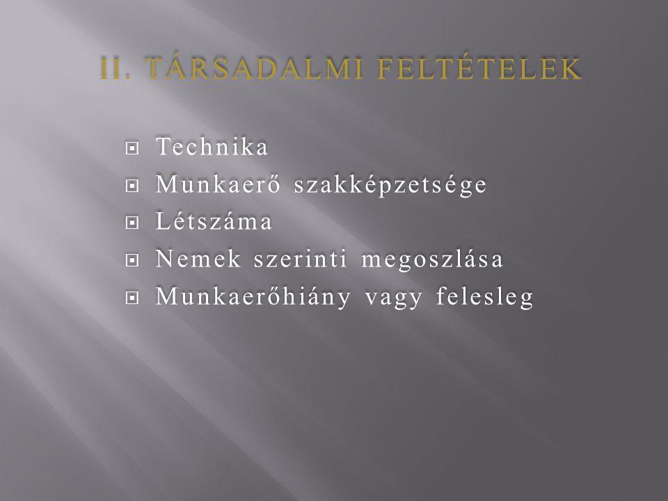 II. TÁRSADALMI FELTÉTELEK  Technika  Munkaerő szakképzetsége  Létszáma  Nemek szerinti megoszlása  Munkaerőhiány vagy felesleg II. TÁRSADALMI FEL