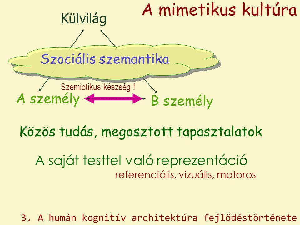 Külvilág A személy B személy A saját testtel való reprezentáció referenciális, vizuális, motoros Közös tudás, megosztott tapasztalatok Szemiotikus kés