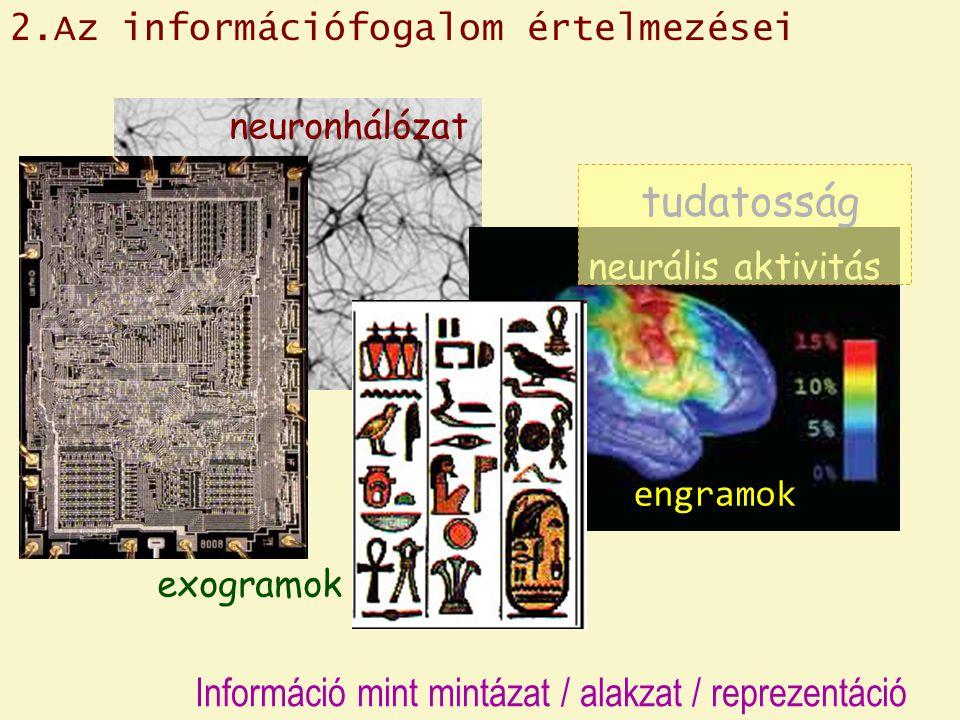 neuronhálózat neurális aktivitás exogramok tudatosság engramok 2.Az információfogalom értelmezései