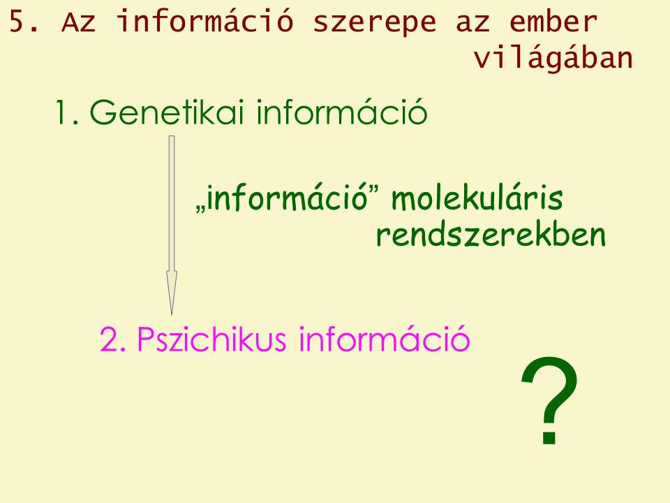 5. Az információ szerepe az ember világában 1.
