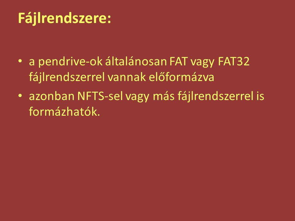 Fájlrendszere: a pendrive-ok általánosan FAT vagy FAT32 fájlrendszerrel vannak előformázva azonban NFTS-sel vagy más fájlrendszerrel is formázhatók.