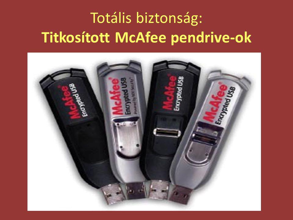 Totális biztonság: Titkosított McAfee pendrive-ok