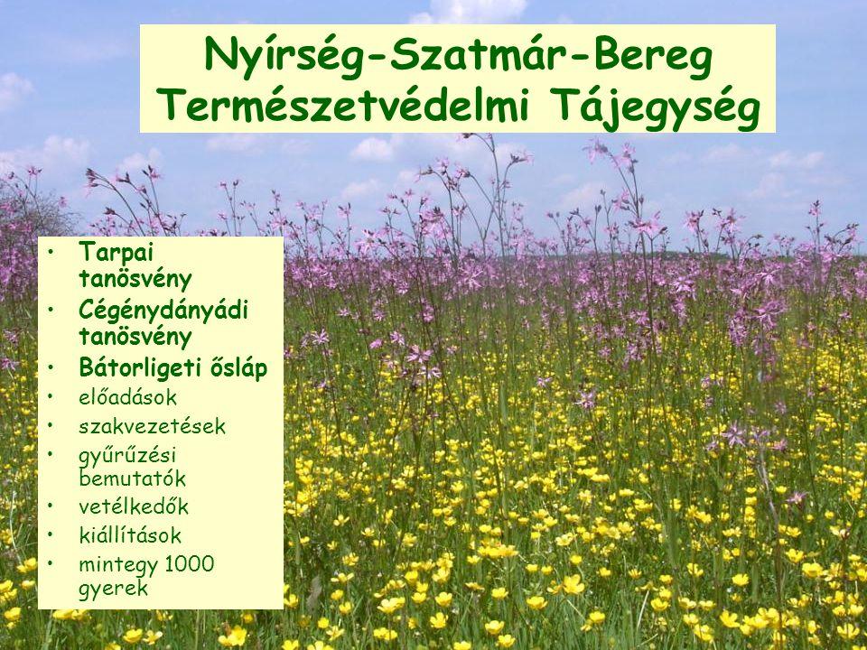 Nyírség-Szatmár-Bereg Természetvédelmi Tájegység Tarpai tanösvény Cégénydányádi tanösvény Bátorligeti ősláp előadások szakvezetések gyűrűzési bemutatók vetélkedők kiállítások mintegy 1000 gyerek