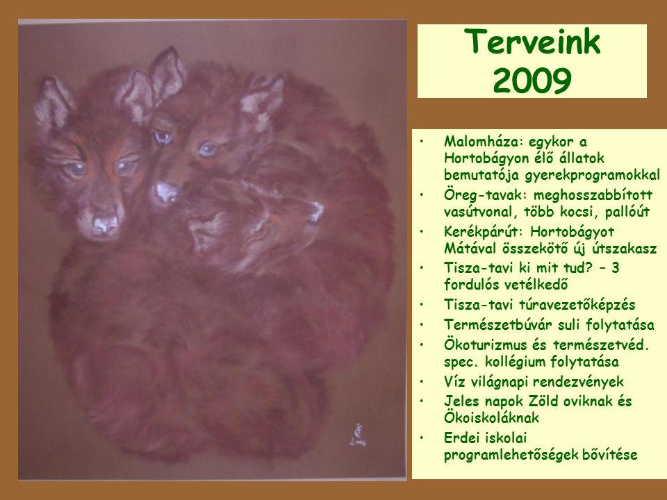 Terveink 2009 Malomháza: egykor a Hortobágyon élő állatok bemutatója gyerekprogramokkal Öreg-tavak: meghosszabbított vasútvonal, több kocsi, pallóút Kerékpárút: Hortobágyot Mátával összekötő új útszakasz Tisza-tavi ki mit tud.
