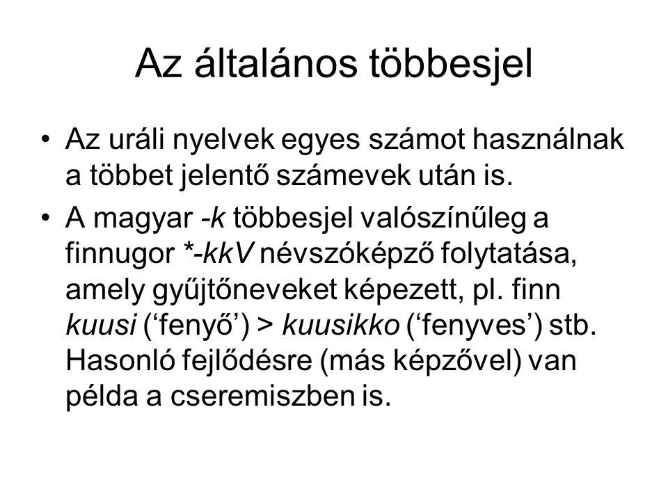 Az általános többesjel Az uráli nyelvek egyes számot használnak a többet jelentő számevek után is. A magyar -k többesjel valószínűleg a finnugor *-kkV