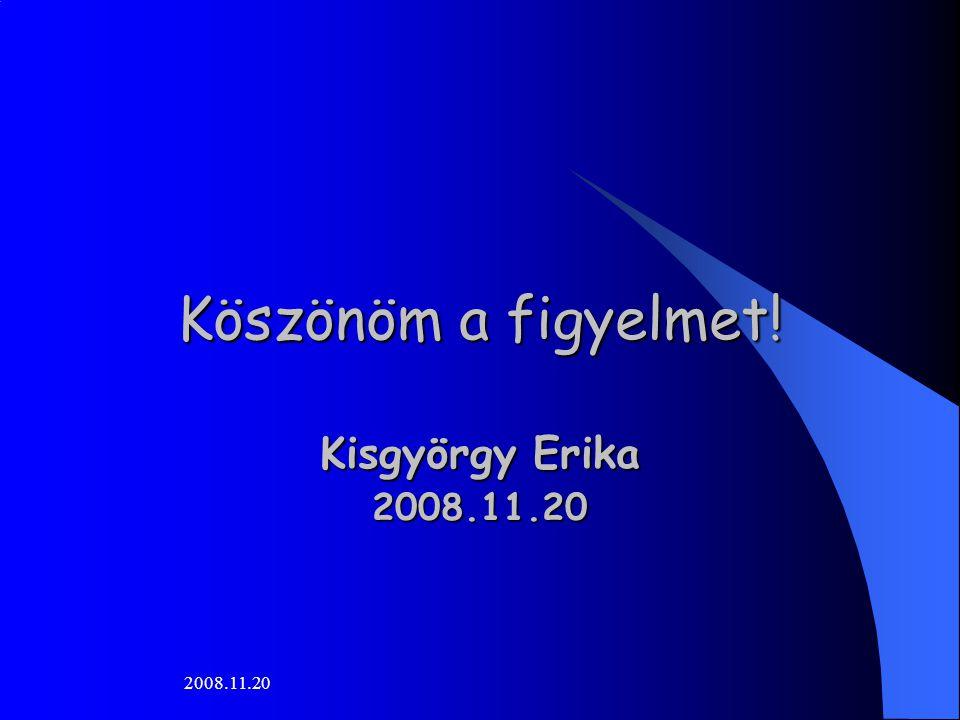2008.11.20 Köszönöm a figyelmet! Kisgyörgy Erika Kisgyörgy Erika2008.11.20