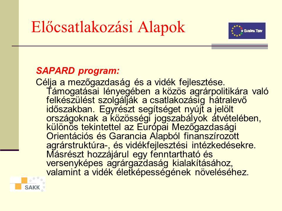 Előcsatlakozási Alapok ISPA program: Az ISPA a közlekedési infrastruktúra és környezetvédelmi beruházások támogatására, valamint a Kohéziós Alap majdani forrásainak igénybevételéhez szükséges programozási technikák elsajátítására hivatott.