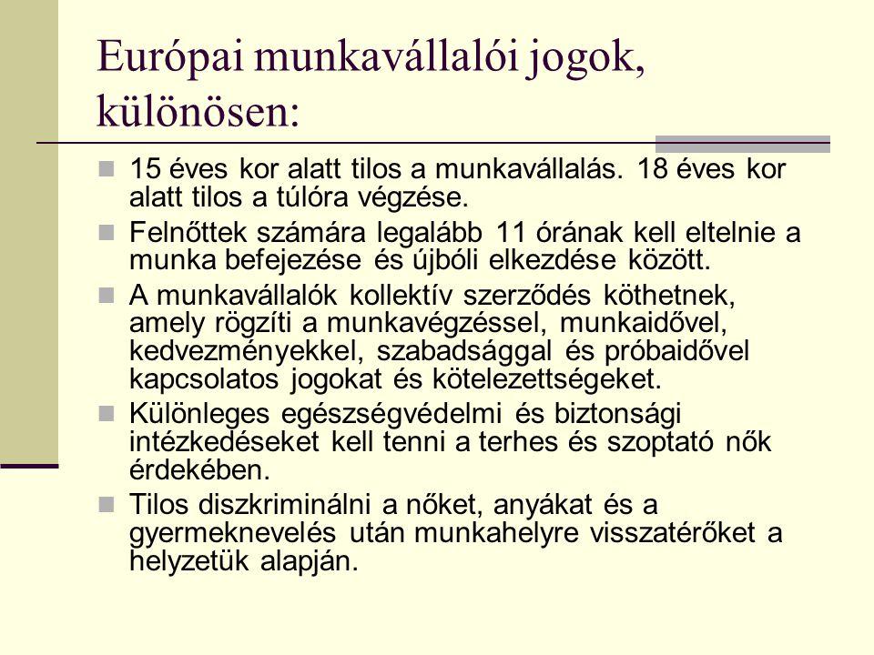 Hangsúlyos szociális témák az Európai Unióban munkavállalók bármely EU tagállamban dolgozhatnak jog az igazságos javadalmazásra jog a jobb élet- és munkafeltételekre jog a szociális védelemre az egyes tagállamokban érvényes szabályok szerint szövetkezési szabadság, jog munkabértárgyalásokra jog a szakképzésre férfiak és nők egyenlő feltételekre vonatkozó joga a munkavállaló joga tanulásra, képzésre, részvételre a munkahelyét érintő döntésekben egészségvédelem, munkahelyi biztonság joga gyermek- és ifjúságvédelem idősek joga méltányos életszínvonalra hátrányos helyzetűek joga a társadalmi és foglalkozási beilleszkedésre