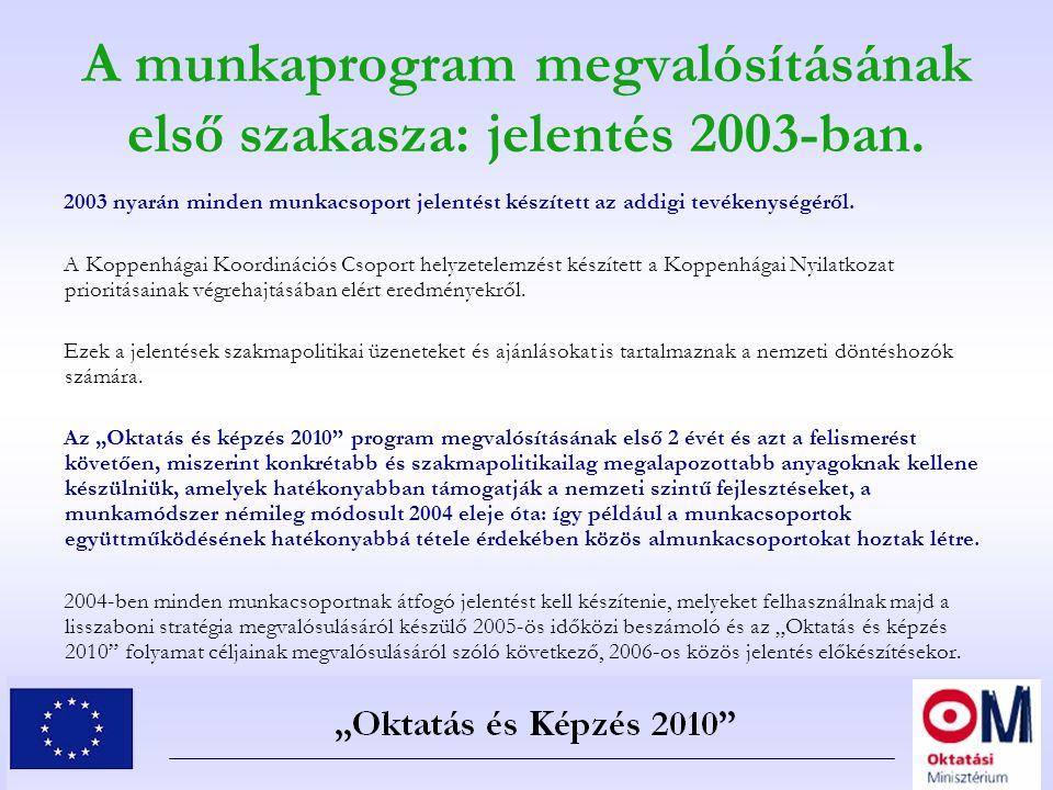 A munkaprogram megvalósításának első szakasza: jelentés 2003-ban. 2003 nyarán minden munkacsoport jelentést készített az addigi tevékenységéről. A Kop