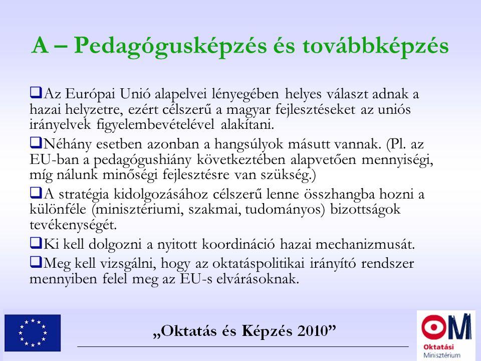 A – Pedagógusképzés és továbbképzés  Az Európai Unió alapelvei lényegében helyes választ adnak a hazai helyzetre, ezért célszerű a magyar fejlesztése