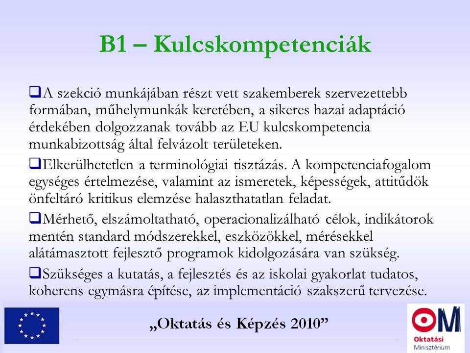 B1 – Kulcskompetenciák  A szekció munkájában részt vett szakemberek szervezettebb formában, műhelymunkák keretében, a sikeres hazai adaptáció érdekéb