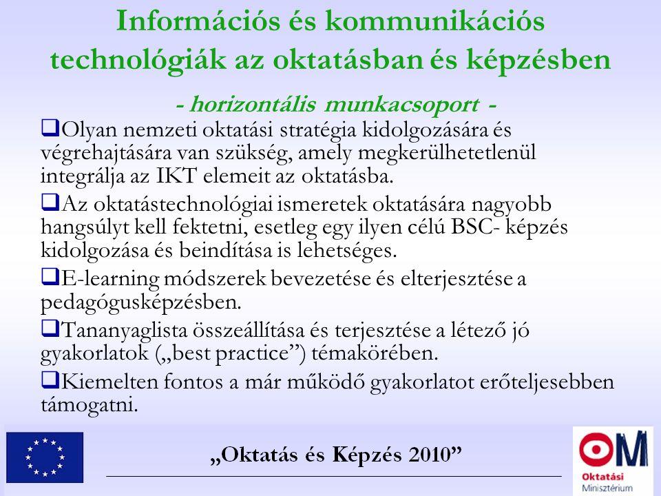 Információs és kommunikációs technológiák az oktatásban és képzésben - horizontális munkacsoport -  Olyan nemzeti oktatási stratégia kidolgozására és