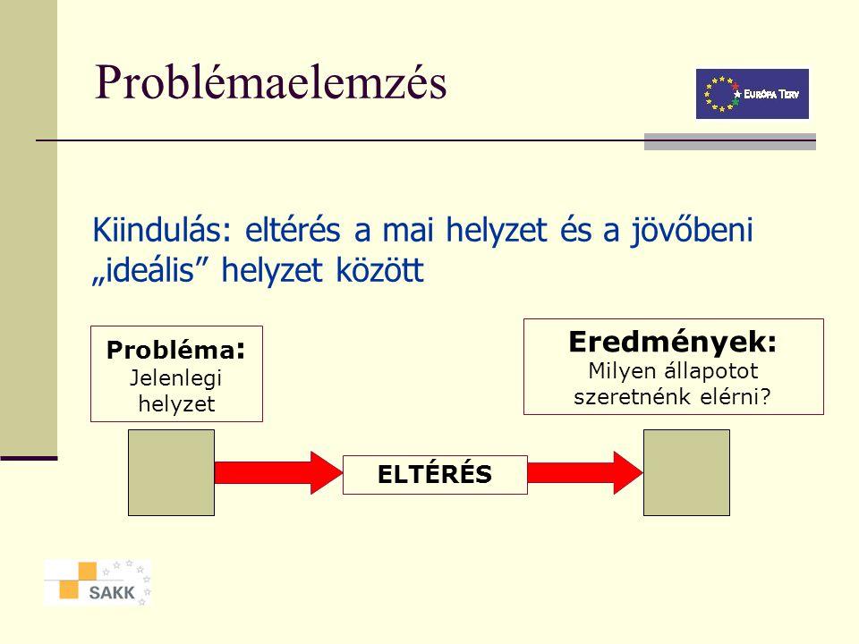 Stakeholder elemzés, mátrix A stakeholder csoport leírása Érdekek és a problémákhoz való viszony Kapacitás és változtatási hajlandóság A csoport meggy