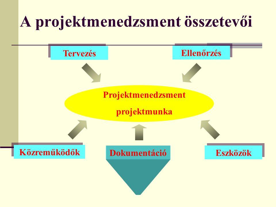 Menedzsment Funkció(k) stratégiákat és célokat határoz meg (T)döntéseket hoz, (I,V) információáramlást teremt meg illetve befolyásol, (SZ,I) szociális