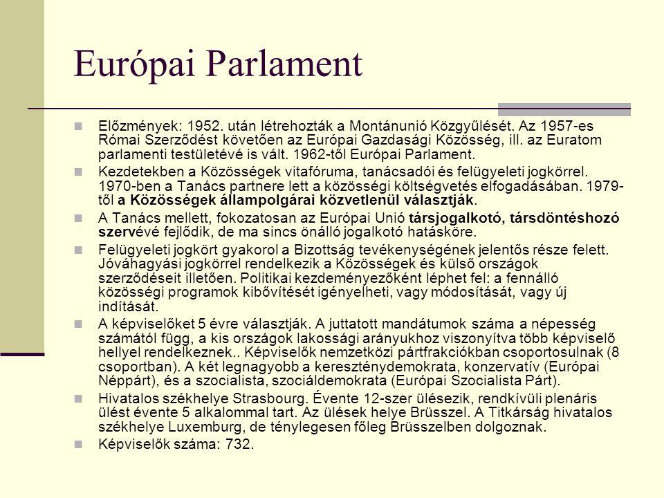 Európai Bizottság Az EU kormányszerűen működő döntéselőkészítő, javaslattevő és bizonyos esetekben végrehajtó feladatokkal is felruházott szerve. Jele