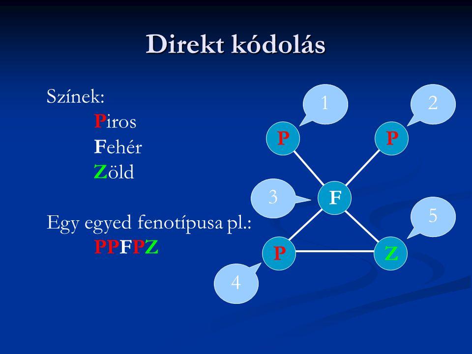 Direkt kódolás Színek: Piros Fehér Zöld Egy egyed fenotípusa pl.: PPFPZ PZPFP 1 3 4 5 2