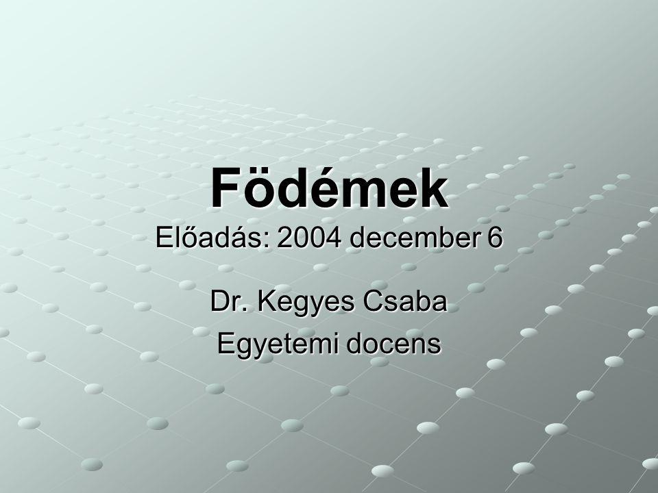 Födémek Előadás: 2004 december 6 Dr. Kegyes Csaba Egyetemi docens