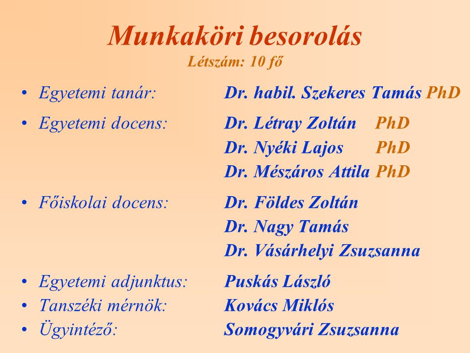 Munkaköri besorolás Létszám: 10 fő Egyetemi tanár:Dr.