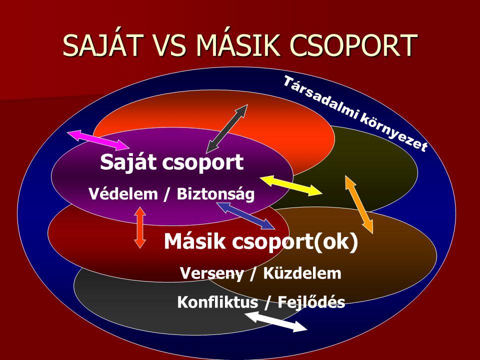 SAJÁT VS MÁSIK CSOPORT Saját csoport Védelem / Biztonság Másik csoport(ok) Verseny / Küzdelem Konfliktus / Fejlődés Társadalmi környezet