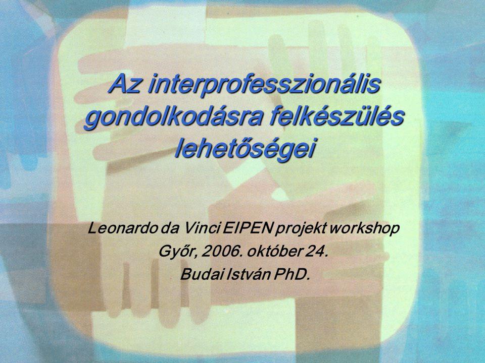 Az interprofesszionális gondolkodásra felkészülés lehetőségei Leonardo da Vinci EIPEN projekt workshop Győr, 2006. október 24. Budai István PhD.