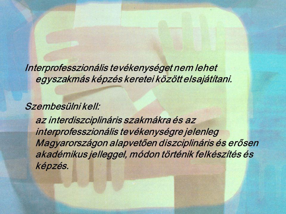 Interprofesszionális tevékenységet nem lehet egyszakmás képzés keretei között elsajátítani. Szembesülni kell: az interdiszciplináris szakmákra és az i