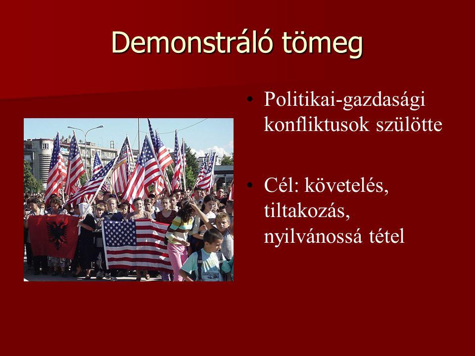 Demonstráló tömeg Politikai-gazdasági konfliktusok szülötte Cél: követelés, tiltakozás, nyilvánossá tétel