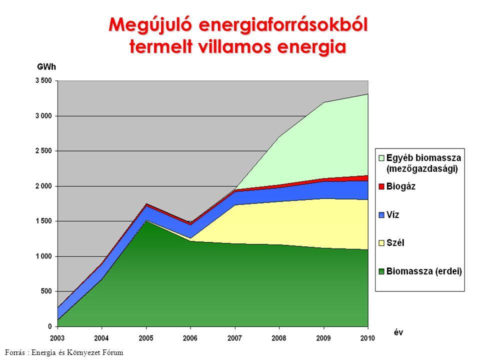 Megújuló energiaforrásokból termelt villamos energia Forrás : Energia és Környezet Fórum
