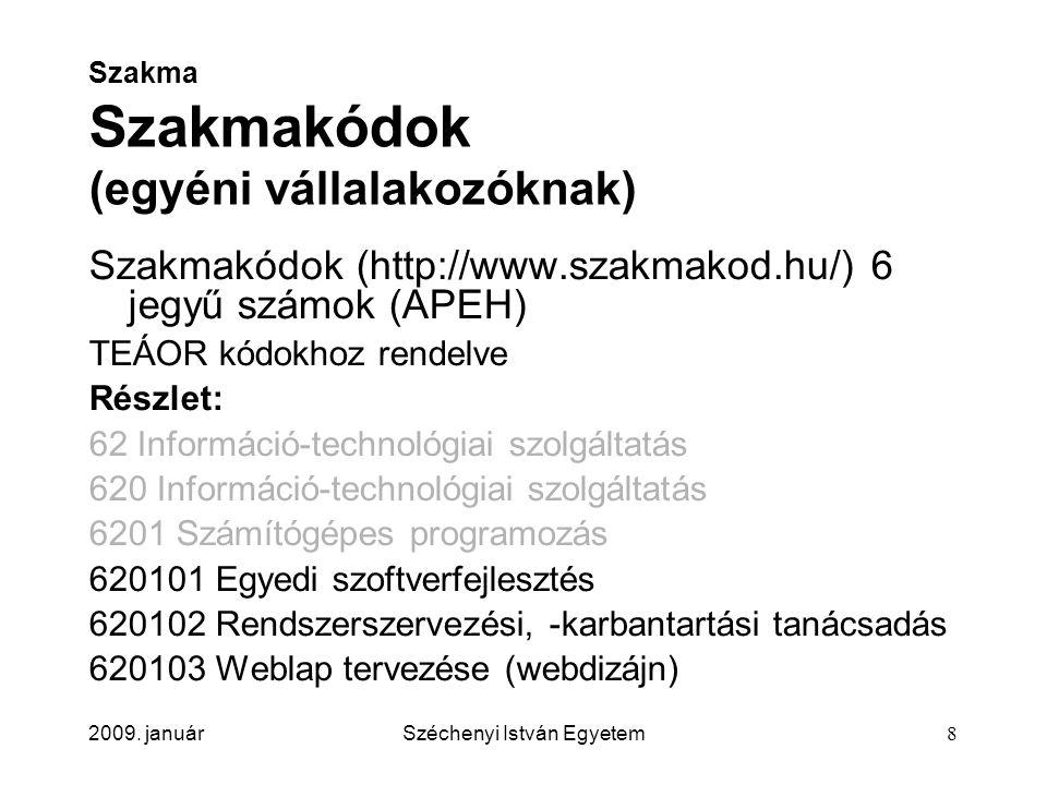 2009. januárSzéchenyi István Egyetem8 Szakma Szakmakódok (egyéni vállalakozóknak) Szakmakódok (http://www.szakmakod.hu/) 6 jegyű számok (APEH) TEÁOR k