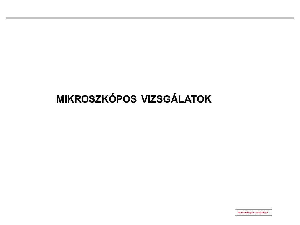 Mikroszkópos vizsgálatok MIKROSZKÓPOS VIZSGÁLATOK