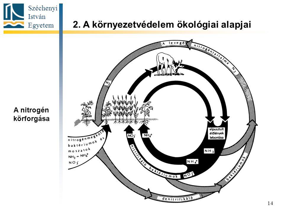 Széchenyi István Egyetem 14 2. A környezetvédelem ökológiai alapjai A nitrogén körforgása