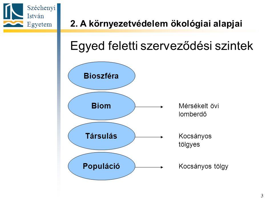 Széchenyi István Egyetem 3 Egyed feletti szerveződési szintek 2. A környezetvédelem ökológiai alapjai Bioszféra Biom Társulás Populáció Kocsányos tölg