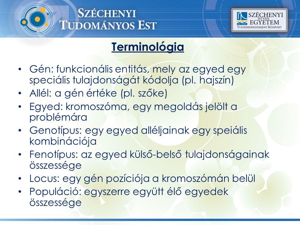 Terminológia Gén: funkcionális entitás, mely az egyed egy speciális tulajdonságát kódolja (pl. hajszín) Allél: a gén értéke (pl. szőke) Egyed: kromosz