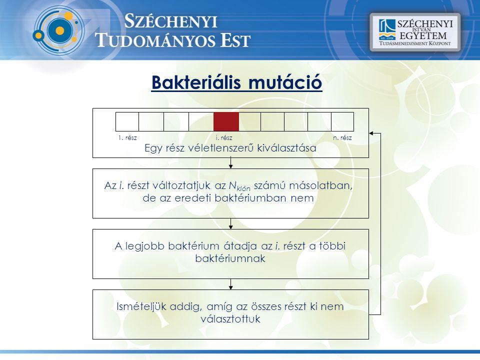 Bakteriális mutáció Egy rész véletlenszerű kiválasztása 1. részi. részn. rész Az i. részt változtatjuk az N klón számú másolatban, de az eredeti bakté