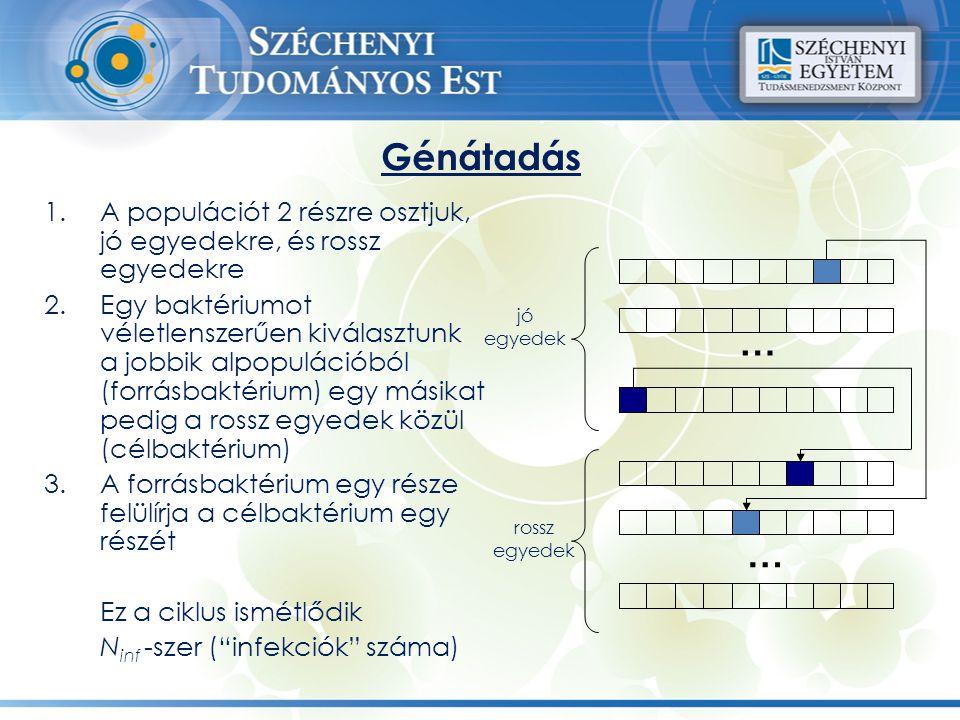 Génátadás 1.A populációt 2 részre osztjuk, jó egyedekre, és rossz egyedekre 2.Egy baktériumot véletlenszerűen kiválasztunk a jobbik alpopulációból (fo