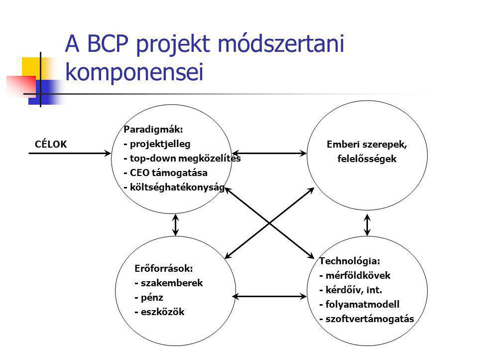 A BCP projekt módszertani komponensei Paradigmák: - projektjelleg - top-down megközelítés - CEO támogatása - költséghatékonyság Technológia: - mérföld