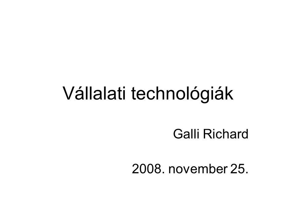 Vállalati technológiák Galli Richard 2008. november 25.
