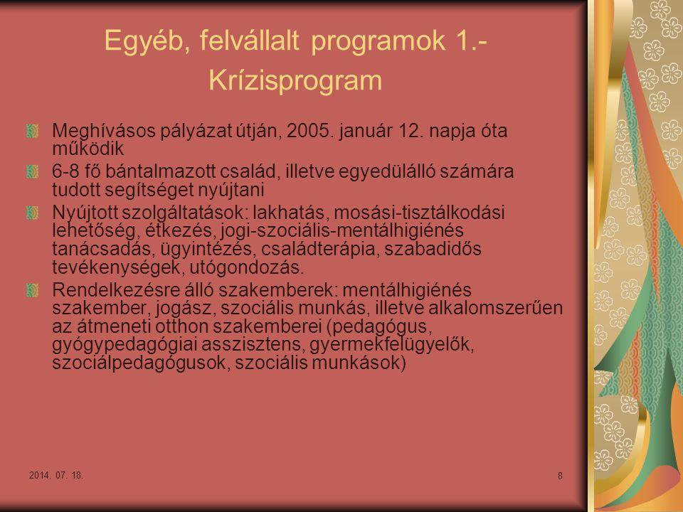 2014. 07. 18. 8 Egyéb, felvállalt programok 1.- Krízisprogram Meghívásos pályázat útján, 2005. január 12. napja óta működik 6-8 fő bántalmazott család