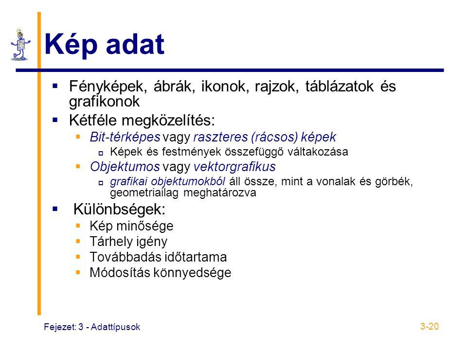 Fejezet: 3 - Adattípusok 3-20 Kép adat  Fényképek, ábrák, ikonok, rajzok, táblázatok és grafikonok  Kétféle megközelítés:  Bit-térképes vagy raszteres (rácsos) képek  Képek és festmények összefüggő váltakozása  Objektumos vagy vektorgrafikus  grafikai objektumokból áll össze, mint a vonalak és görbék, geometriailag meghatározva  Különbségek:  Kép minősége  Tárhely igény  Továbbadás időtartama  Módosítás könnyedsége