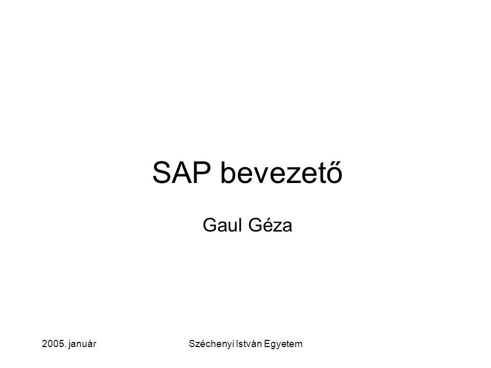 2005. januárSzéchenyi István Egyetem SAP bevezető, szemlélet R/3, kliens-szerver megoldás