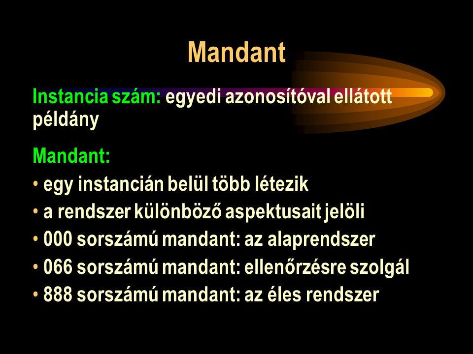 Mandant Instancia szám: egyedi azonosítóval ellátott példány Mandant: egy instancián belül több létezik a rendszer különböző aspektusait jelöli 000 so